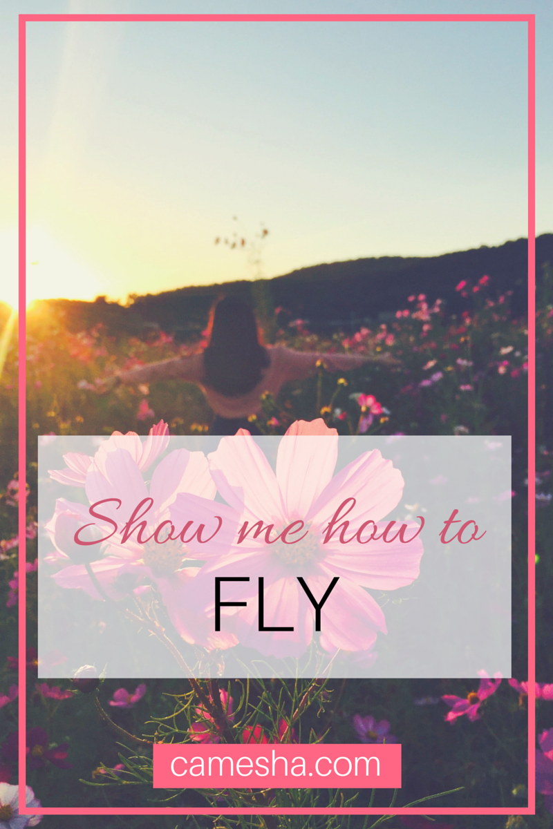 My daughter perfectly summed up the type of mom I'm trying to be. When she asked me one question : to show how her how to fly.  Teach me how to fly. camesha.com